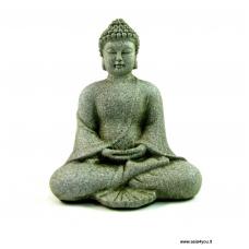 Medituojantis Buda