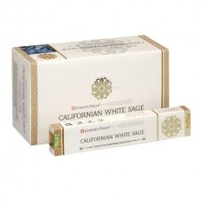 Garden Fresh Californian White Sage x 12