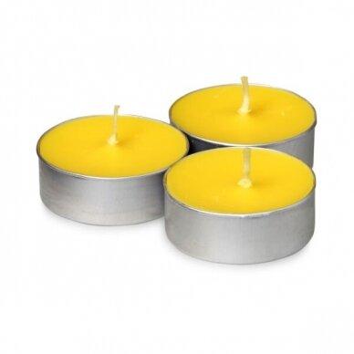 Goloka Nag Champa arbatinė žvakė