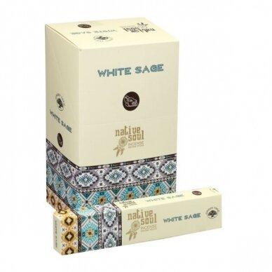 Native Soul White Sage x 12
